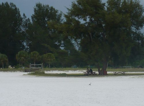 Picnic and volleyball are on Siesta Beach